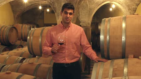positive ageing : Handsome man posing among the wooden barrels in winery cellar Stock Footage