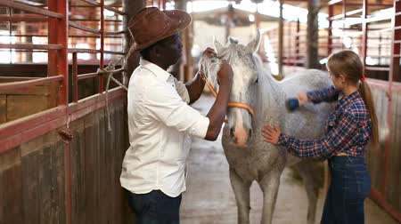 horse breeding : Positive Caucasian girl and afro man using electric trimmer for shearing