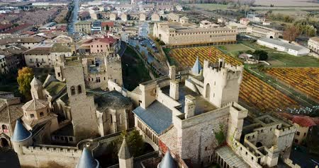 palacio real : Aerial view of the castle of the Palacio Real de Olite. Navarre. Spain Stock Footage