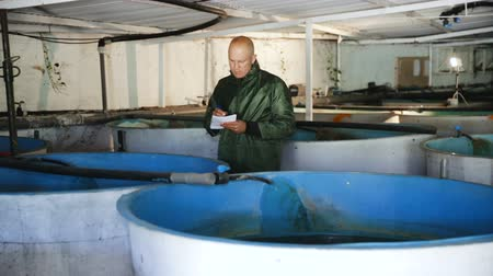 professionally : Portrait of a man fish farm worker at trout breeding incubator Stock Footage