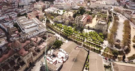 andalusie : View from drone of residential areas of Spanish town of Jerez de la Frontera with Catholic Cathedral and former Moorish alcazar