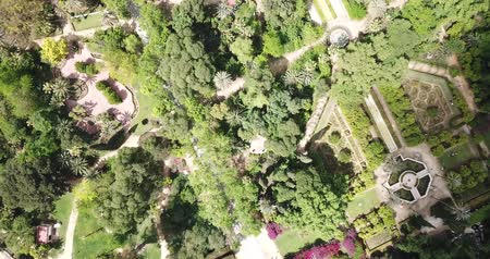 Андалусия : Parque de Maria Luisa — Maria Luisa Park in Seville, view from above. Andalusia, Spain Стоковые видеозаписи