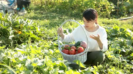 weeding : Cheerful Asian girl holding basket of tomatoes, cucumbers and peppers on her plantation