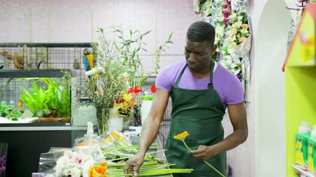 floriculture : Friendly African-American man owner of floral shop selling fresh flowers, demonstrating colored gerberas Stock Footage
