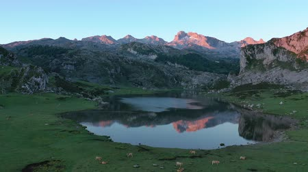 hegytömb : Serene landscape with one of Lakes of Covadonga and mountain range at dusk