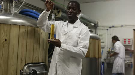 área de trabalho : African american man brewer is inviting to brew-house, man working on background Stock Footage