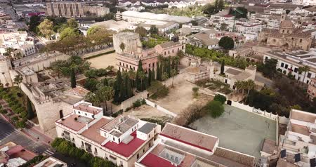 mór : View from drone of residential areas of Spanish town of Jerez de la Frontera with Catholic Cathedral and former Moorish alcazar