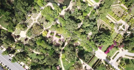 park paths : Parque de Maria Luisa — Maria Luisa Park in Seville, view from above. Andalusia, Spain Stock Footage