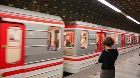 fare : PRAGUE, CZECH REPUBLIC - OCTOBER 13, 2019: Inside view of Hradcanska Metro station with underground carriage in Prague