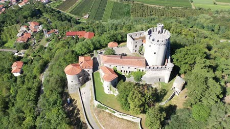 reddish : Aerial view of ancient fortified Branik Castle complex also known as Rihemberk Castle with round keep, stone defensive walls and corner turrets, Slovenia Stock Footage
