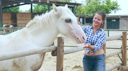 enclosure : Smiling young woman taking care and talking to white horse on ranch