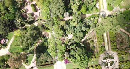 andalucia : Parque de Maria Luisa — Maria Luisa Park in Seville, view from above. Andalusia, Spain Stock Footage