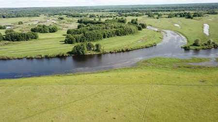 águas : Image of gulf meadows in the floodplain of the Oka River, Russia Vídeos