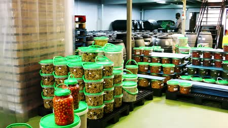 pickling : Confident African-American man engaged in producing of pickled olives with young female assistant, stacking plastic packing buckets with finished products
