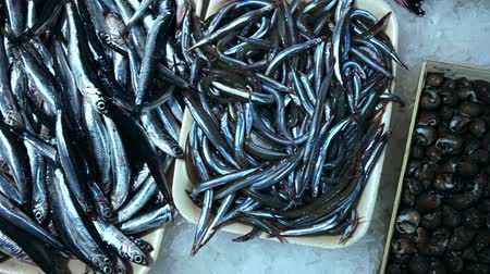 Pile of fresh anchovies fishes laying on the ice on the market Stock mozgókép