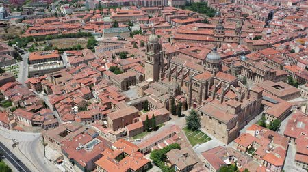 Salamanca Cathedral and historical center of city, Spain Stok Video