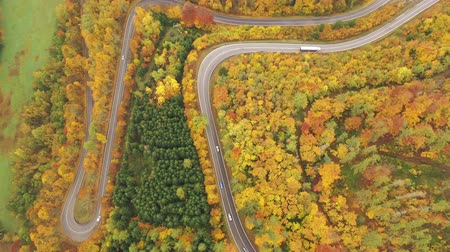 territorial : Aerial view of picturesque autumn hilly landscape with winding road between yellow trees