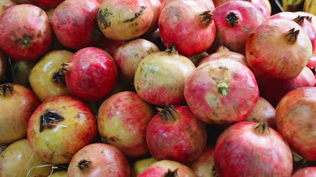 гранат : Fresh pomegranates in cardboard boxes