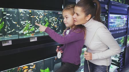 vivarium : Cheerful parents with little girl in arms looking for aquarium fish in pet store