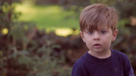yards : Little blond boy with big blue eyes walking and turns to look at camera while playing outside in green yard with rack focus hand held in slow motion. Stock Footage