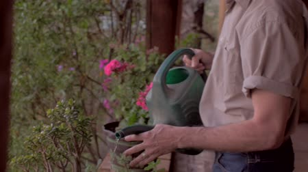 ogrodnik : Middle aged man waters a tropical potted plant on a deck surrounded by colorful flowers with a green watering can in slow motion with a steadicam.