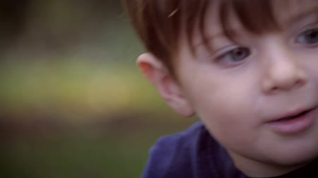 доверие : Slow motion of a cute little boy intensely focusing on his toys while playing outside on a beautiful summer day with soft focus.
