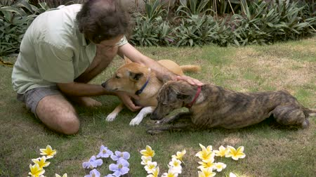 unconditional : A middle aged man pets two dogs next to flowers that spell love on the grass
