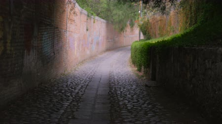 mroczne : Camera moving from dark to light in a corridor or alley with cobblestones, brick walls, and lush greenery - steadicam shot