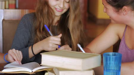 felicidade : Cute teenage girls work on homework together and laugh and have a good time