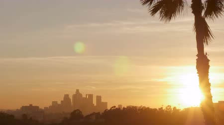 sosyal konular : Downtown Los Angeles sunset time lapse and a palm tree shot from East LA illuminating the night skyline