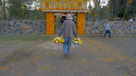 украшенный : TZURUMUTARO, MEXICO - NOVEMBER 1, 2016 - Man carries marigold flowers into a graveyard decorated for the Mexican celebration Day of the Dead to honor those who have died during this traditional holiday Стоковые видеозаписи