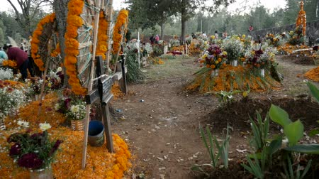 украшенный : TZURUMUTARO, MEXICO - NOVEMBER 1, 2016 - POV walking through the beautifully decorated graves and alters for Mexican holiday Day of the Dead outside of Patzcuaro, Michoacan