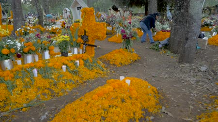 crânio : TZURUMUTARO, MEXICO - NOVEMBER 1, 2016 - POV walking through a graveyard decorated with candles marigolds, the favorite things of the deceased during the Mexican celebration Day of the Dead outside of Patzcuaro, Michoacan Vídeos