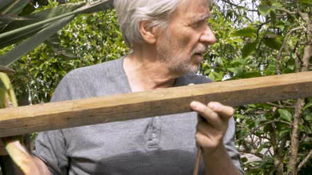 trabalhador manual : Active retired senior man reusing an old piece of wood removing rusty nails to fix a fence at his home