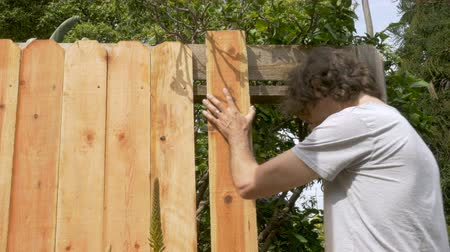 trabalhador manual : Handsome man placing a new wooden board while repairing a fence outside during the day