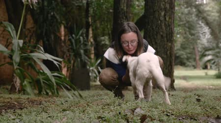 dog sitter : A well trained dog comes to her woman owner off leash while playing outside in slow motion Stock Footage