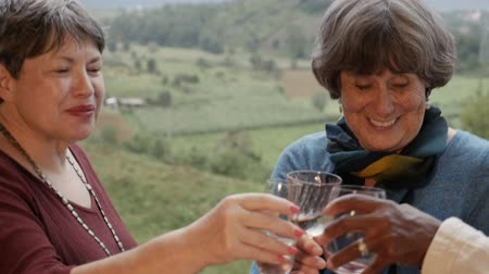 companionship : Three happy smiling beautiful active senior women in their 60s toast with wine glasses outside with an amazing mountain view in slow motion