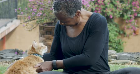 companionship : Beautiful elderly black woman in her 60s petting and scratching her domestic orange pet cat with love outside