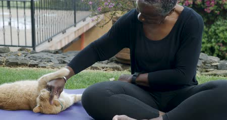 companionship : Attractive African American woman over 50 playing with her frisky pet orange cat on an exercise yoga mat