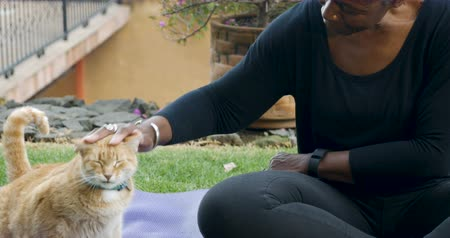 comfortable : Attractive multi ethnic woman in her 60s stroking and petting her orange pet cat while sitting on an exercise yoga mat