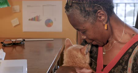 companionship : Mature African American woman taking a break petting her orange pet cat in her home office