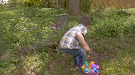 ищу : Camera follows a young cute 4 - 5 year old boy finding an easter egg on a traditional easter egg hung in slow motion