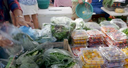 mexicano : Vender restocking fresh organic vegetables including spinach and arugula in plastic bags at a farmers market while people are shopping