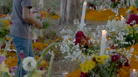 marigolds : TZURUMUTARO, MEXICO - NOVEMBER 1, 2016 - Young Mexican teenage boy lighting candles at a grave alter for day of the dead