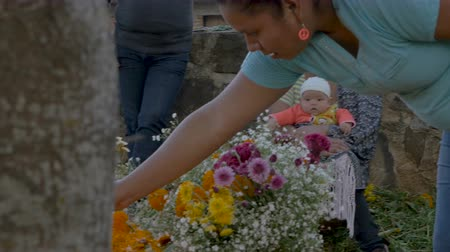 muertos : TZURUMUTARO, MEXICO - NOVEMBER 1, 2016 - Mexican woman holding a newborn baby giving instructions to another woman decorating a grave with flowers during day of the dead Stock Footage