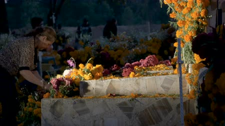 TZURUMUTARO, MEXICO - NOVEMBER 1, 2016 - Middle aged Mexican woman setting up flowers on a tomb in a graveyard during day of the dead dolly shot Stok Video
