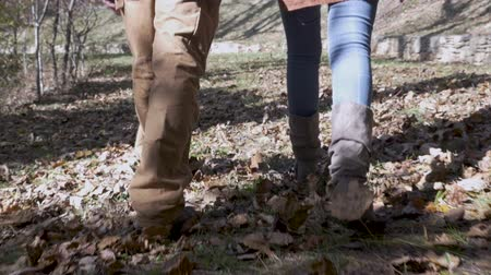 tarihleri : Camera follows a couple holding hands while walking through leaves in a park in slow motion Stok Video