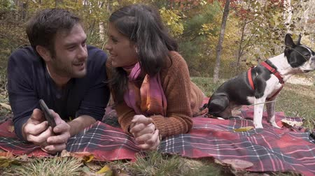 Бостон : Young man holding a mobile phone talking with an attractive woman while lying on a picnic blanket with their purebred Boston Terrier dog at a park outside - slow motion
