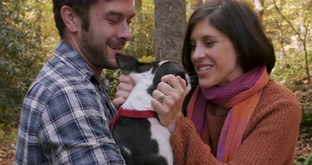 companionship : Happy young excited smiling man and woman couple in their 30s holding and petting a Boston Terrier small dog in a dog park or the woods while hiking or walking