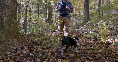 companionship : Happy handsome smiling young man hiking through the woods with his small Boston Terrier dog during the day Stock Footage